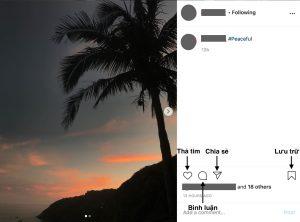 Cách sử dụng Instagram trên máy tính cho người mới bắt đầu 14