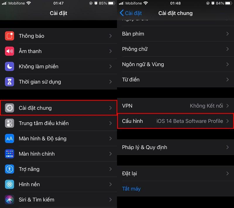 Cách cập nhật iOS 14 trên iPhone, iPad và iPod 6
