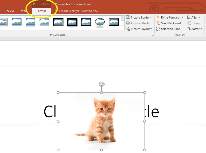 Hướng dẫn cách chèn ảnh vào PowerPoint ai cũng làm được