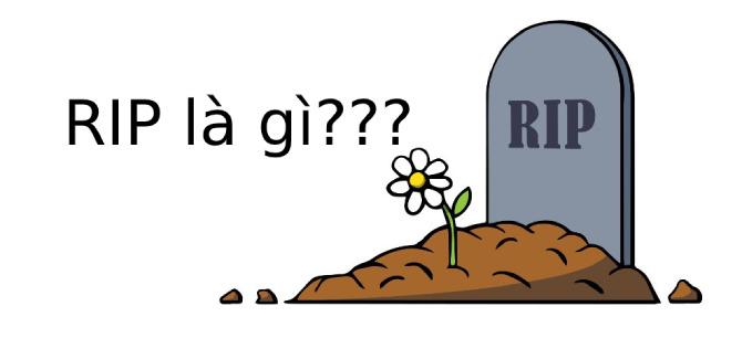 RIP là gì? Sử dụng như thế nào cho hợp mọi hoàn cảnh?