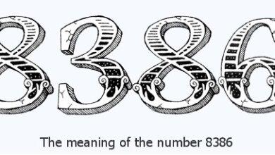 8386 là gì?