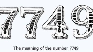 7749 là gì
