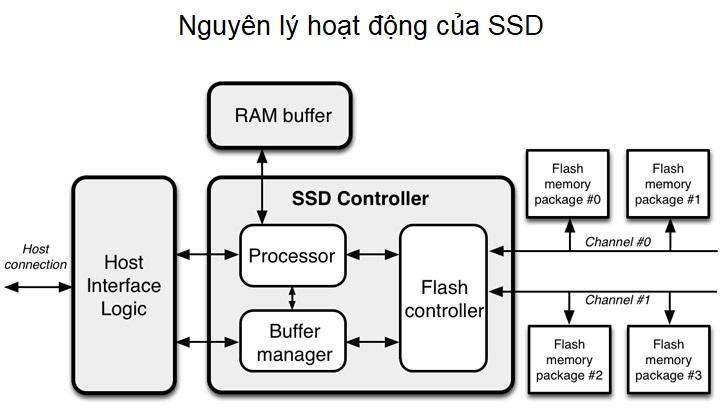 SSD là gì? Những đặc điểm về cấu tạo và nguyên lý hoạt động khuyến nó vượt trội hơn HDD 9