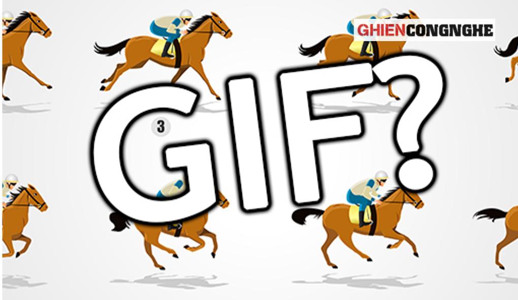 """GIF là gì? Cười không kịp nhặt lại """"Alo"""" với những gì một bức ảnh GIF đem lại. Tại sao lại thế?"""