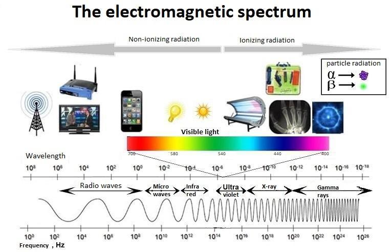 Thực hư chuyện sóng WiFi có hại không đến sức khỏe con người 1