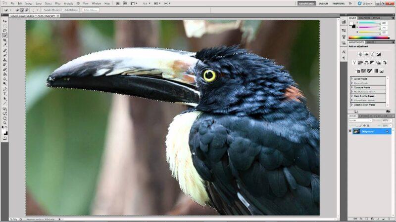 Top 15 phần mềm làm nét ảnh tốt nhất từ cơ bản đến nâng cao 3